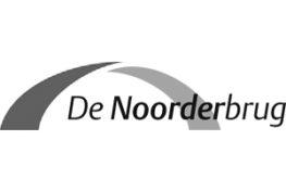 De Noorderbrug - TopActs.nl - Referentie - Zwart-Wit