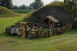 Mobiele kinderboerderij, speciaal voor elk event! TopActs.nl 0418-511405
