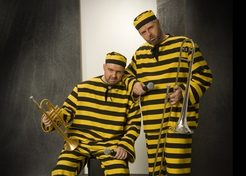 Muzikale Daltons (Duo) TopActs 1