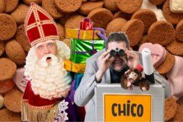 Sinterklaasfeest met Alex - TopActs.nl, speciaal voor elk evenement