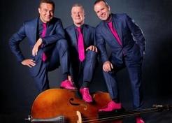 Trio De Flamingo's - TopActs.nl - 246-176