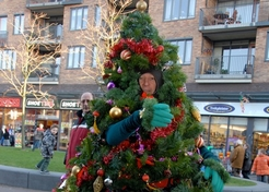 Levende Kerstboom - TopActs.nl - 246-176